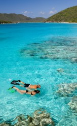 Enjoy your honeymoon snorkeling on a reef in the BVI